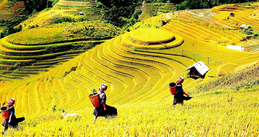 Cẩm nang giúp bạn đi được nhiều nơi hơn khi du lịch SaPa