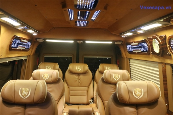Daily Limousine