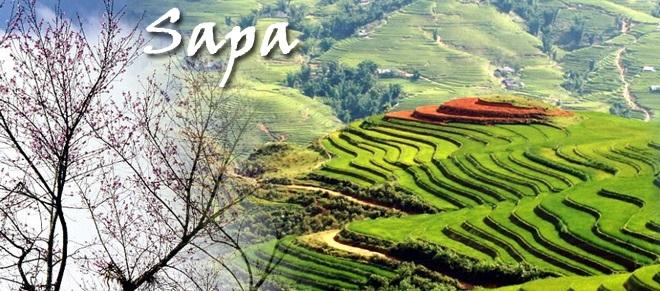 Dự trù tổng chi phí du lịch Sapa từ Hà Nội tự túc chính xác nhất