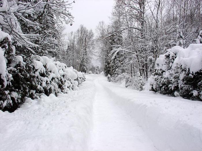 Ngỡ ngàng vẻ đẹp Sapa mùa tuyết rơi